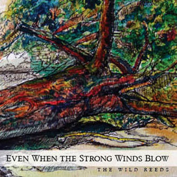 Even When The Strong Winds Blow cover art