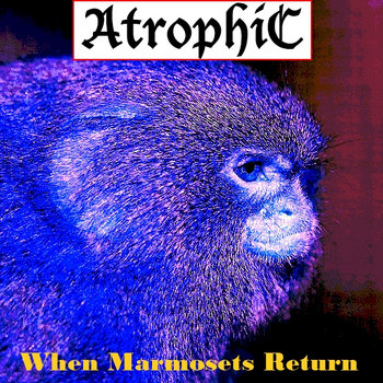 Greatest (S)Hits XX - When Marmosets Return cover art