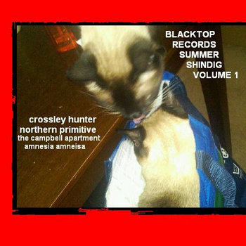 Blacktop Records Summer Shindig Volume 1 (BTR026) cover art