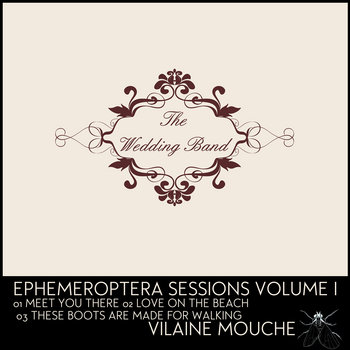 Ephemeroptera Volume 1 cover art