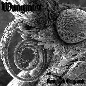 Kempisch Ongemak cover art
