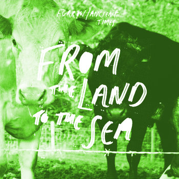 From The Land To The Sea cover art