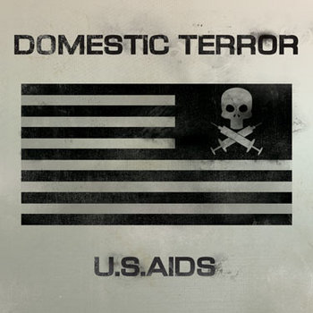 USA!DS cover art
