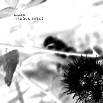 Illusion Fields cover art