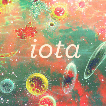 Iota cover art