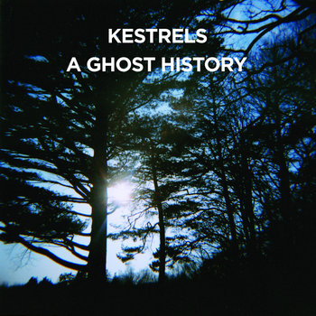 A Ghost History cover art