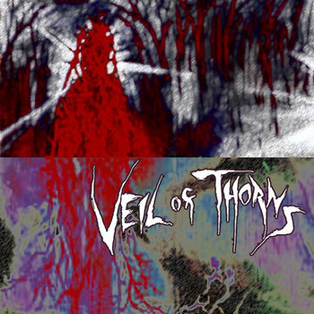 Veil of Thorns cover art