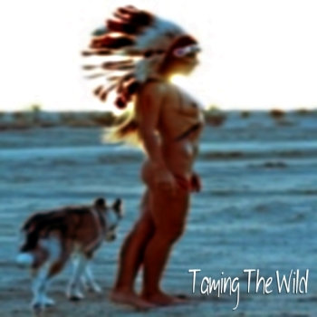 Taming The Wild cover art