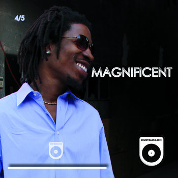 Magnificent (4 of 5) cover art