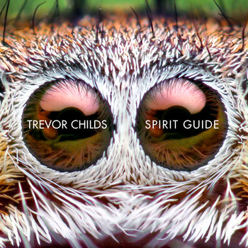 Spirit Guide cover art
