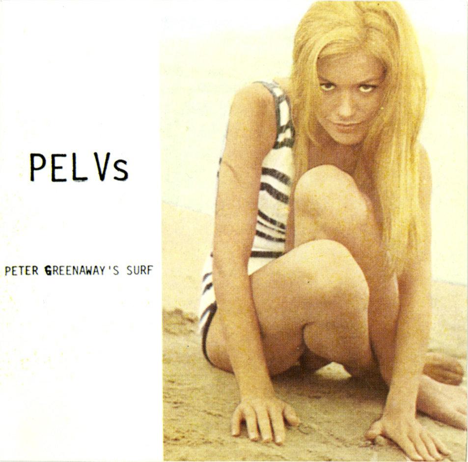 Pelvs