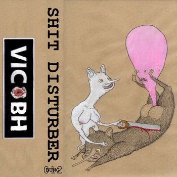 SHIT DISTURBER cover art