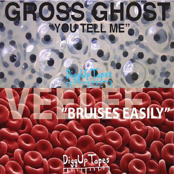 Cassingle DGUP 006 (Gross Ghost/Veelee Split) cover art