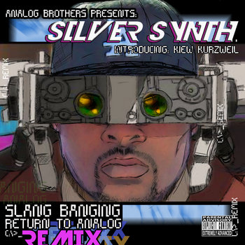 Slang Banging 2 rmx LP (Limited Addition) cover art