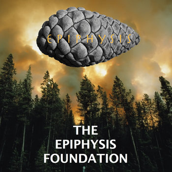 THE EPIPHYSIS FOUNDATION cover art
