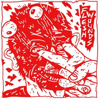 Flesh Wounds cover art