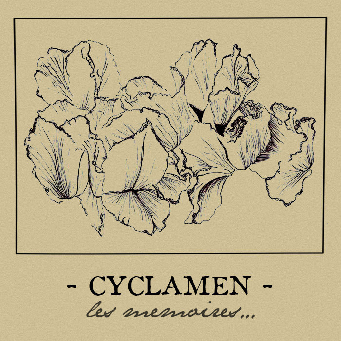 Cyclamen, post-hardcore/screamo from Le Mans A4059834235_10